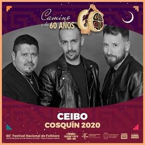 GRINFELD - Festival de Cosquin 2020 - Grilla